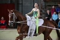Lancelot - voltížní závody v Tlumačově 2013