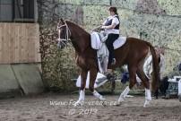 Lancelot se svou lonžérkou, je to velký koník :)
